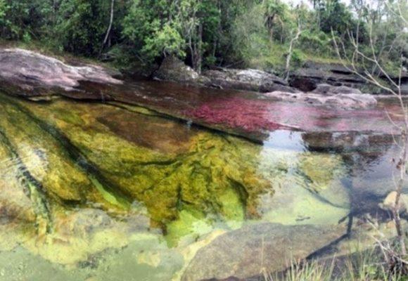 Caño Cristales, la tecnología en el río de los siete colores