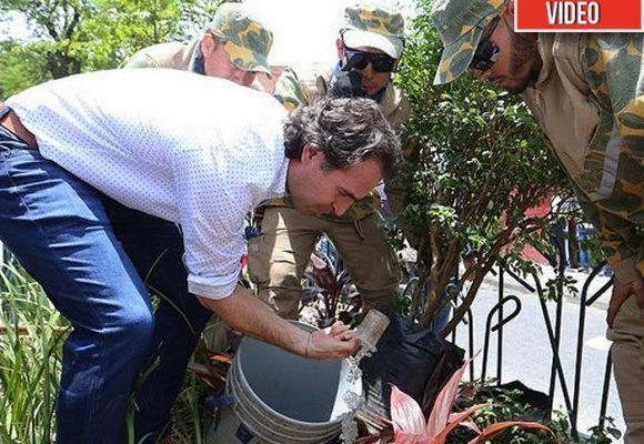 VIDEO. Árboles y más árboles para ganársela a la polución en Medellín