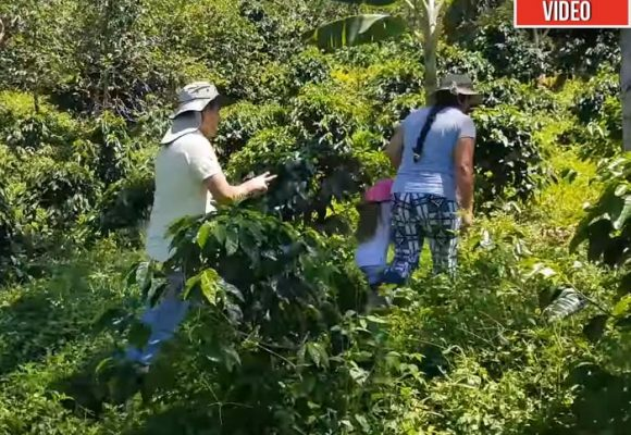 La familia que se la ganó a los paramilitares de Antioquia