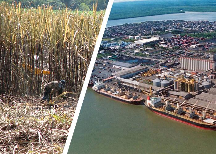 Sin tanto petróleo el Valle pica en punta en la economía Colombiana