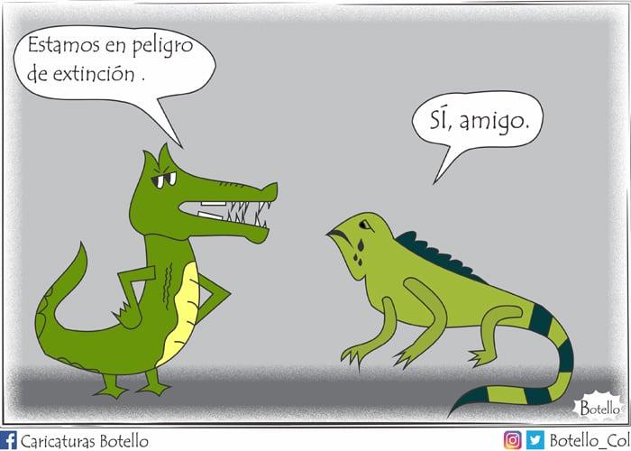 Caricatura: Vía de extinción