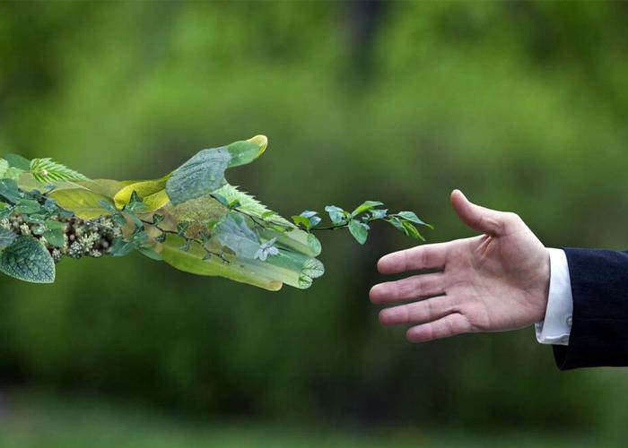No es ambientalismo, es desarrollo sostenible