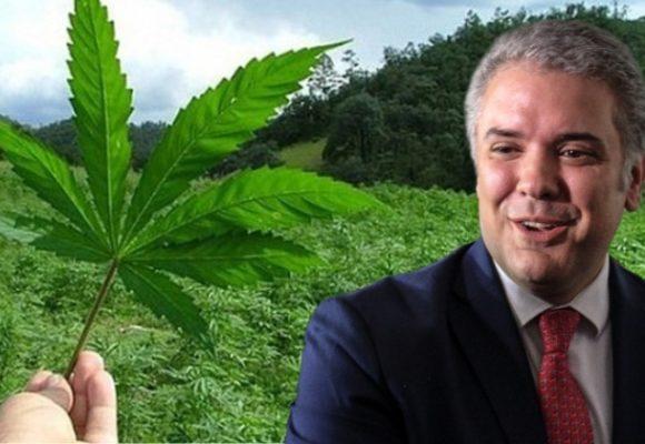 Es hora de legalizar el cannabis en Colombia