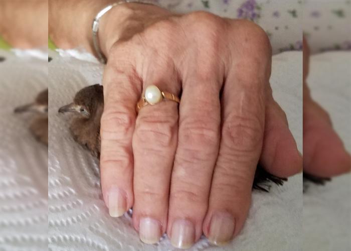 La soledad y sobrecarga de los cuidadores