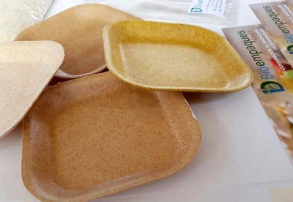 Unicauca le mete la ficha a los productos biodegradables