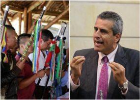 Luis Fernando Velasco, el senador que podría entrar a mediar con los indígenas
