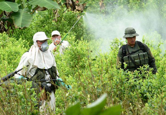 ¿Glifosato, erradicador de cultivos ilícitos o agente asesino?