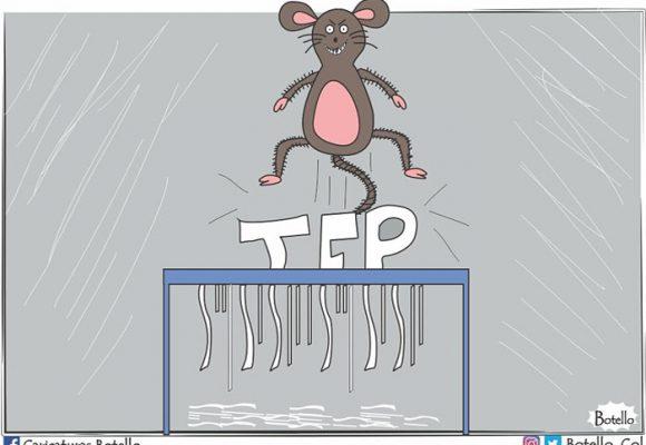 Caricatura: La JEP, en vilo