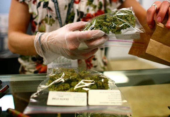Colombia le apuesta a la Marihuana