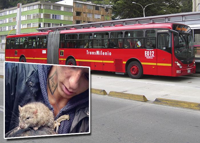 Las 5 cosas más extrañas que han transportado en TransMilenio