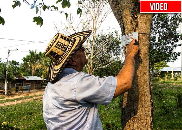 Los muertos del paramilitarismo viven en un bosque en el Magdalena Medio