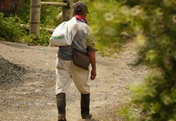 Una mirada a la crisis del agro colombiano