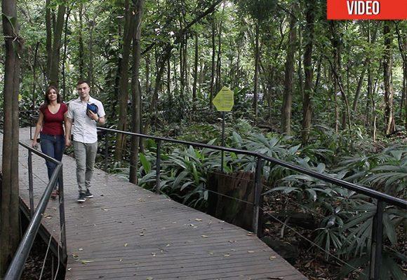Jardín Botánico de Medellín, un paraíso para respirar en Semana Santa