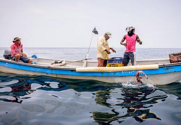 Durante semana santa los colombianos incrementan tres veces el consumo de pescado