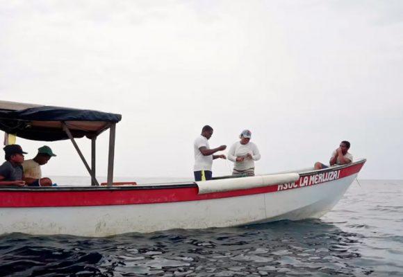 De Bahía Solano ya no sale coca sino el mejor pescado que se come en semana santa