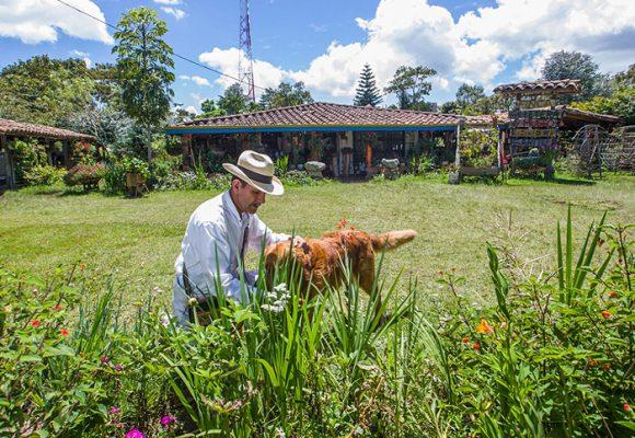 Sector agrícola: un consentido de la Cuarta Revolución