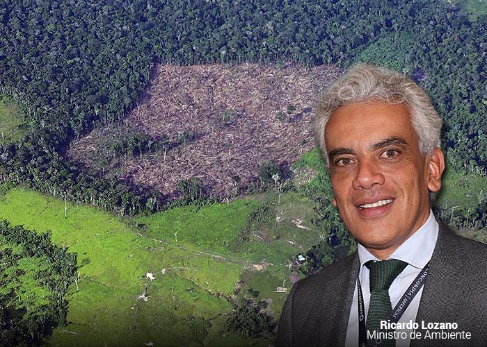 Colombia, el cuarto país que más tumba bosques en el mundo
