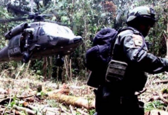Paz con coca: una historia imposible
