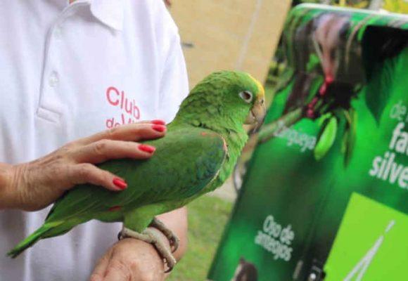 La fauna que regresa a Medellín