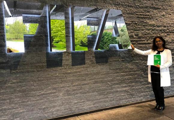 La tarjeta verde llegó a la Fifa
