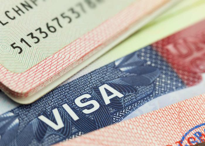 De visas y magistrados