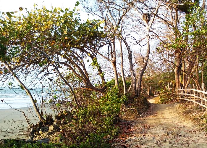 Viento Solar, una reserva natural en medio de la soledad, el miedo y el abandono