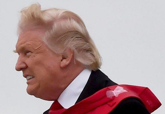 La ensoñadora América gringa con look antipático