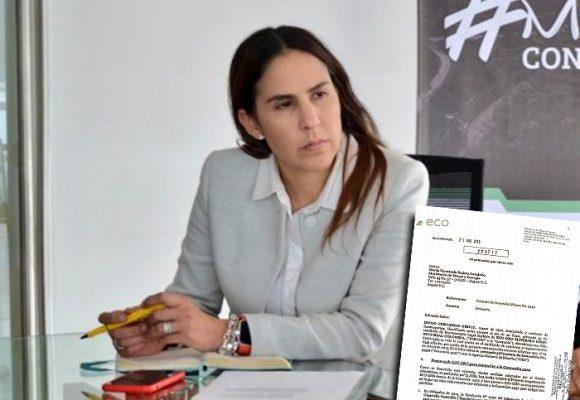 La directora de la ANM espanta a la minería en Santurban