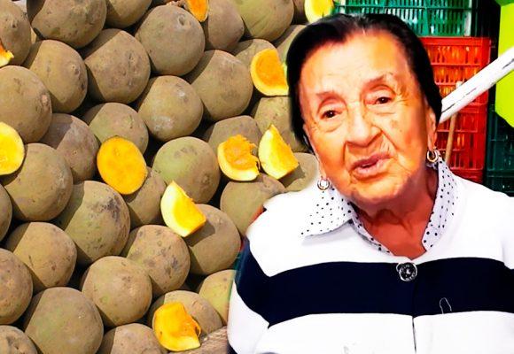 Ana Rita, a sus 94 años, una de las productoras de zapote más importante de Antioquia