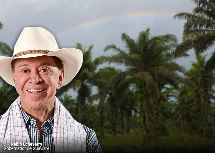 Agoniza la selva del Guaviare en manos del gobernador Nebio Echeverry
