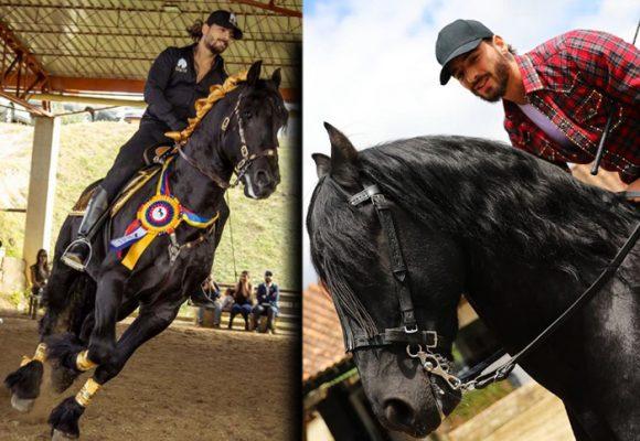 Hércules, el caballo consentido de Maluma, fue el rey de Agroexpo 2019
