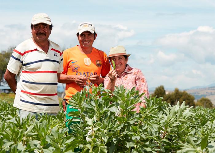 Grupo Éxito le apuesta al comercio sostenible con productores colombianos