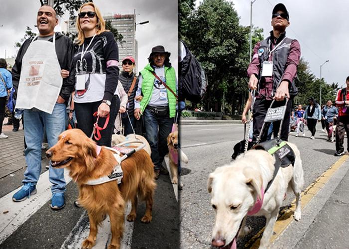 La marcha de los ciegos y sus perros guía en Bogotá