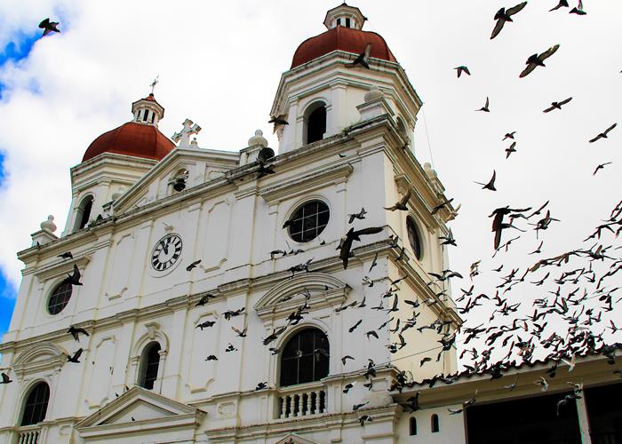 Sabotajes, trampas y perfiles falsos: la fórmula que también se repite en Rionegro