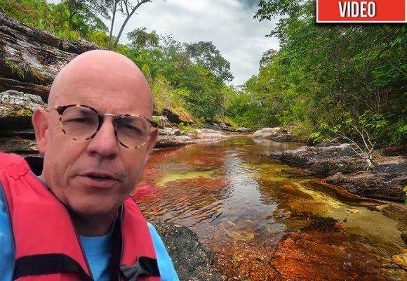Caño Cristales: el milagro que produjo el único río del mundo que florece