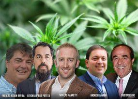 Los empresarios que se podrían arruinar por la marihuana medicinal
