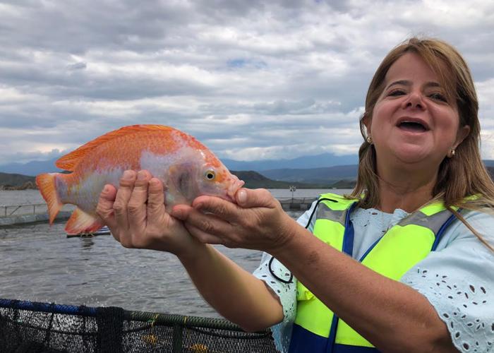 El proyecto con el que Elsa Noguera quiere repoblar de peces el Atlántico