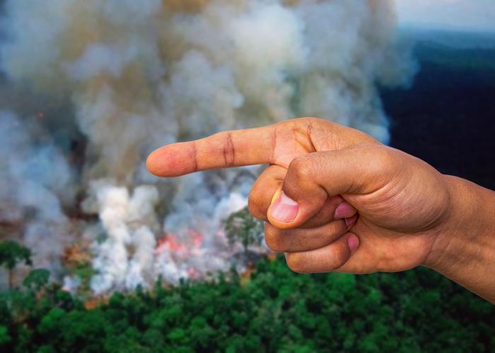 Los culpables de la crisis del Amazonas