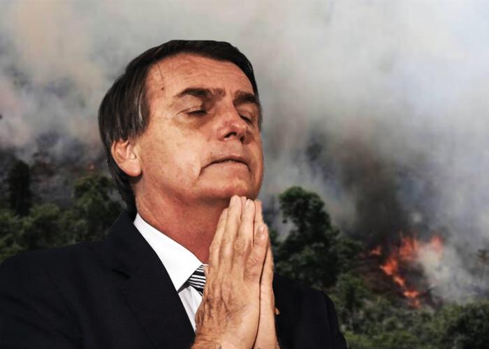 La responsabilidad de los evangélicos en la destrucción de la Amazonía