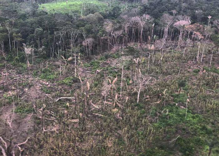 El Amazonas colombiano también se quema