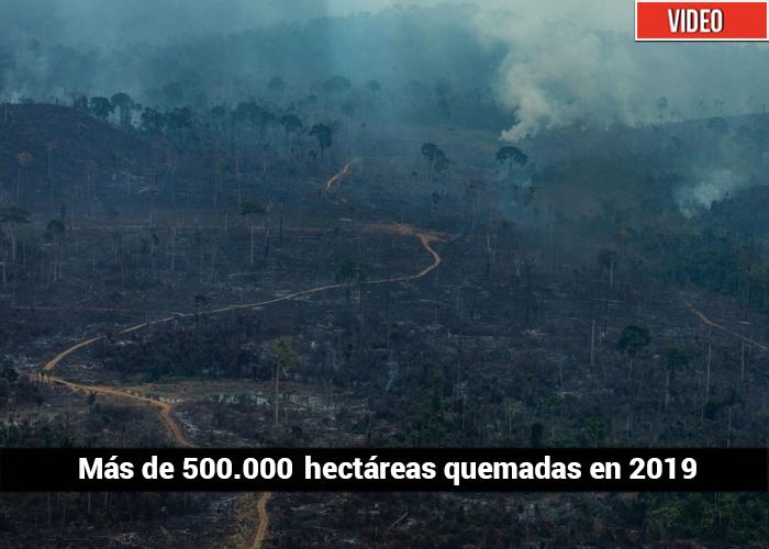 Los incendios del Amazonas vistos desde el aire
