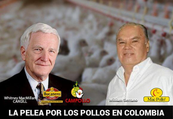 Una familia gringa se convirtió en el mayor criador de pollos en Colombia