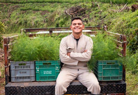 Cambió una vida en Europa por cultivar espárragos en Caldas