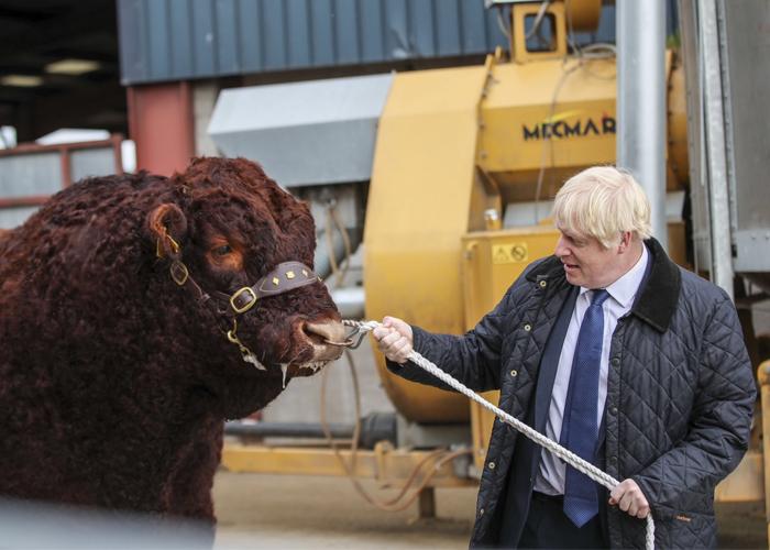 Boris Johnson y la historia de un bufón