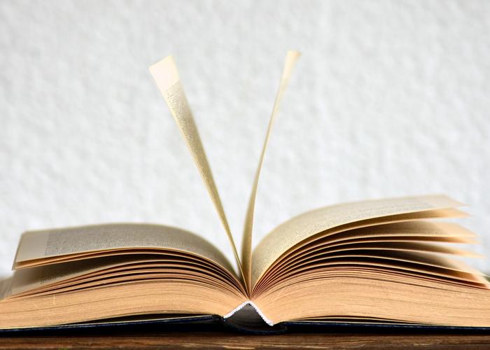 Campesinos e indígenas en la literatura latinoamericana