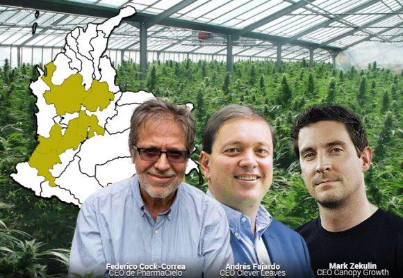 El mapa de la marihuana en Colombia