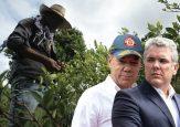 La traición de Santos y Duque a 600 familias que querían sacar la coca de Suárez