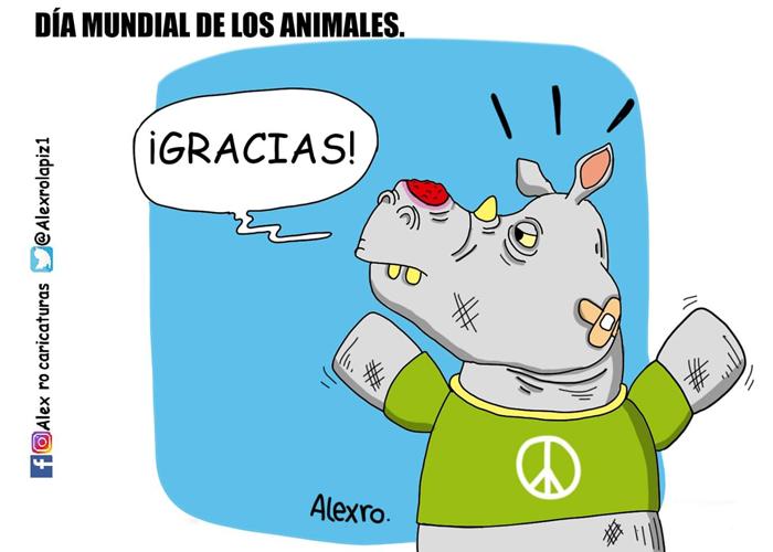 Caricatura: Día Mundial de los Animales...