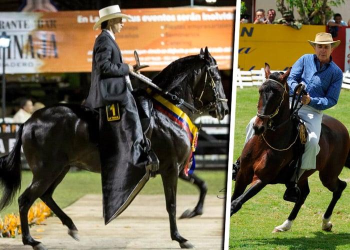 Criadores de caballos criollos se abren camino en el exterior