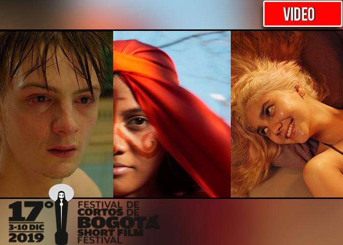 Bogoshorts enciende las pantallas de cine con la mayor muestra de cortos del país